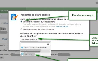 Vincular Adwords e Google Analytics PAP 6